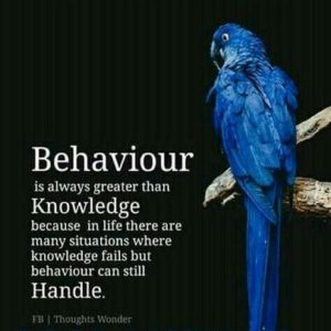 Good behavior triumphs great knowledge